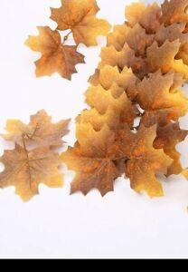 Sneaky sniper Leaves Brown 100x leaves