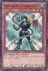Yu-Gi-Oh ! Carte Hydrotortoise, le guerrier Eveillé YS14-FR015 - Commune