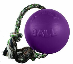 Jolly Pets Romp-n-Roll 6 inch Purple Rubber Ball with Rope for Dogs