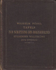1874 Waldbäume Tafeln zu Schätzung des Holzgehaltes von Pössl Vlg. Eduard Hölzel