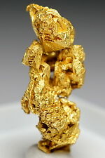 Skeletal Crystallized Native Gold Crystal Cluster #BOX11-06 New Find China