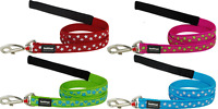 Red Dingo Stylish Star Design Lead for Dog / Puppy 4 Colours FREE P&P