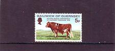 Guernsey Mi 66 Animal Cow 1972 MNH Postfris