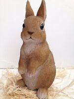 Young Baby Rabbit Real Life  Vivid Arts Garden Ornament