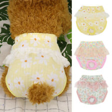 Female Dog Diaper Underwear Cotton Shorts Sanitary Small Dog Physiological Pant