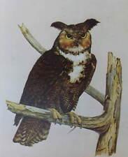 vintage E. Rambow Horned Owl