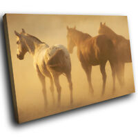 A268 Horses Herd Brown Yellow Funky Animal Canvas Wall Art Large Picture Prints