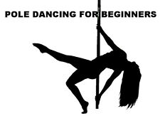 LEARN POLE DANCING FOR BEGINNERS DVD STEP BY STEP GUIDE FITNESS KEEP FIT  1ST