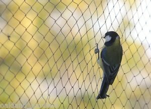Nero 20 Chiodi di Fissaggio in Plastica 10m Rete per Uccelli Rete Anti-Uccelli Verde Rete Protezione per Piante stagni Frutti Larghezza Maglie Hywean 2