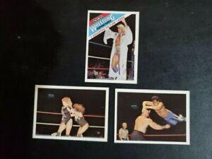 1988 Wonderama NWA-3 Card Set-Ric Flair, Ricky Santana, Warlord, Misty Blue