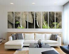 Extra Large Elephant Wildlife Animal Canvas Wall Art Picture Print Home Decor