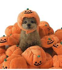 Halloween Cat Costume Hats Headbands Festival Pumpkin Costumes for Dogs Cat