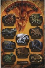 2003 HASBRO DUNGEONS & DRAGONS D&D DRAGON SPECIES CHART POSTER 22x34 NEW