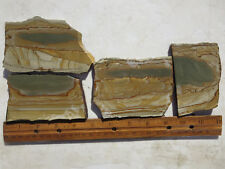 786  PICTURE JASPER SLABS GREAT FOR CABS OR ROCK PAINTINGS. FROM OLD ROCK SHOP