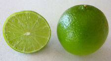 Key Lime (5 seeds) fresh this season's harvest from my garden{DELICIOUS}