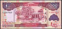 2011 Somaliland 1000 Shillings Banknote * UNC * P-20a *