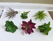 6 Artificial Mini Desert Succulent Plants Landscape