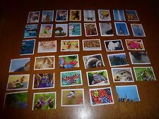 Penny Rewe Sticker Unser Deutschland 10 auswählen 5,8,10,23,24,27,42,49,64,75,91