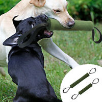 Aggressive Chew Toys for Dogs Indestructible Puppy Jute Bite Tug for Pets S M