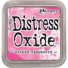 Ranger Picked Raspberry Tim Holtz Oxide Distress Ink Pad TDO56126