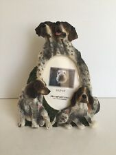 German Shorthair Pointer Dog 3x5 Picture Frame By E&S Imports ~NEW~