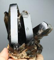 1.58lb Natural Rare Beautiful Black QUARTZ Crystal Cluster Mineral Specimen