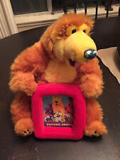 "13"" Bear In The Big Blue House Plush Photo Frame US SELLER VERY HARD TO FIND"