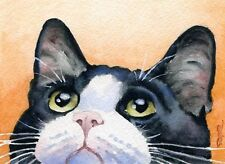 TUXEDO CAT Watercolor 8 x 10 ART Print Signed by Artist DJR
