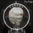 2021 - Bold Bison - $25 EHR Extra High Relief Head Proof Pure Silver Coin Canada