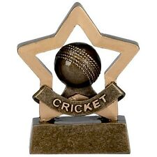 Cricket Trophy mini star perfect for schools. *Free Engraving*. stag do