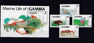 Fish Marine Life Gambia 544 - 47+ Block 12 Turtle Etc. (MNH)