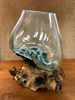 Hand Blown Molten Glass TERRARIUM Vase / Fish Bowl On Driftwood Base