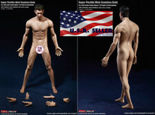 1/6 PHICEN TBLeague PL2018-M36 A Seamless Male Muscular Body SUNTAN Sport Style