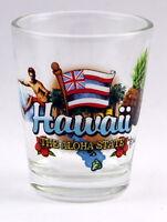 HAWAII ALOHA STATE ELEMENTS SHOT GLASS SHOTGLASS