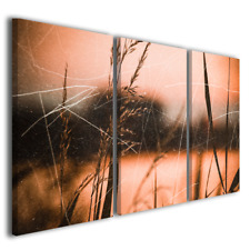 Quadri astratti moderni Grass vintage digitale stampa tela canvas ® quality