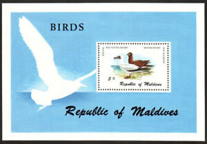 Maldives Stamp - Birds Stamp - NH