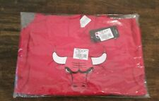 Chicago Bulls Flux Pullover Hoodie Boys 8-10 NEW!