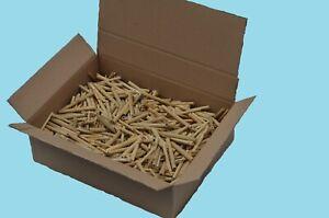 1000 Stück Niströhren, Schilf 10 cm Länge, Bruthülsen, Wildbienen, Insektenhotel