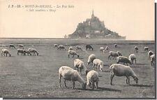 Cpa-50 - mont saint michel - the salt meadows