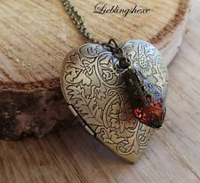XXL Medallion Photo Medallion filigranglas LOCKET Cuore Steampunk Retrò catena Heart