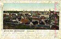 AK Lubsko (Sommerfeld) Goldfenster, Totalansicht, 1905, 15/02