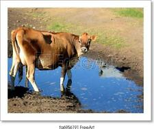 Jersey Milk Cow Art Print / Canvas Print. Poster, Wall Art, Home Decor - C
