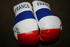 FRANCE / FRENCH FLAG Mini Boxing Gloves *NEW*