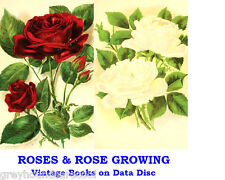 Roses Collection Vintage Books on Data Disc Rose Growing Gardening Cultivation