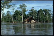 672060 House On Upper Amazon River Peru A4 Photo Print