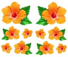 ~ Photoessence Hibiscus Leaf Orange Tropics Fresh Flower Mrs Grossman Stickers ~