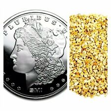1 TROY OZ .999 SILVER SMI MORGAN BU + 10 PIECE ALASKAN PURE GOLD NUGGETS