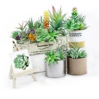 Artificial Succulent Plants Faux Assorted- 16 pc Unpotted Faux Succulent Plants