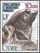 Timbre Faune marine Phoques TAAF PA48 ** lot 13840