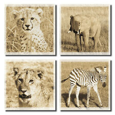 "4 Baby African Safari Animal Sepia Art Posters; Four 12x12"" Prints"
